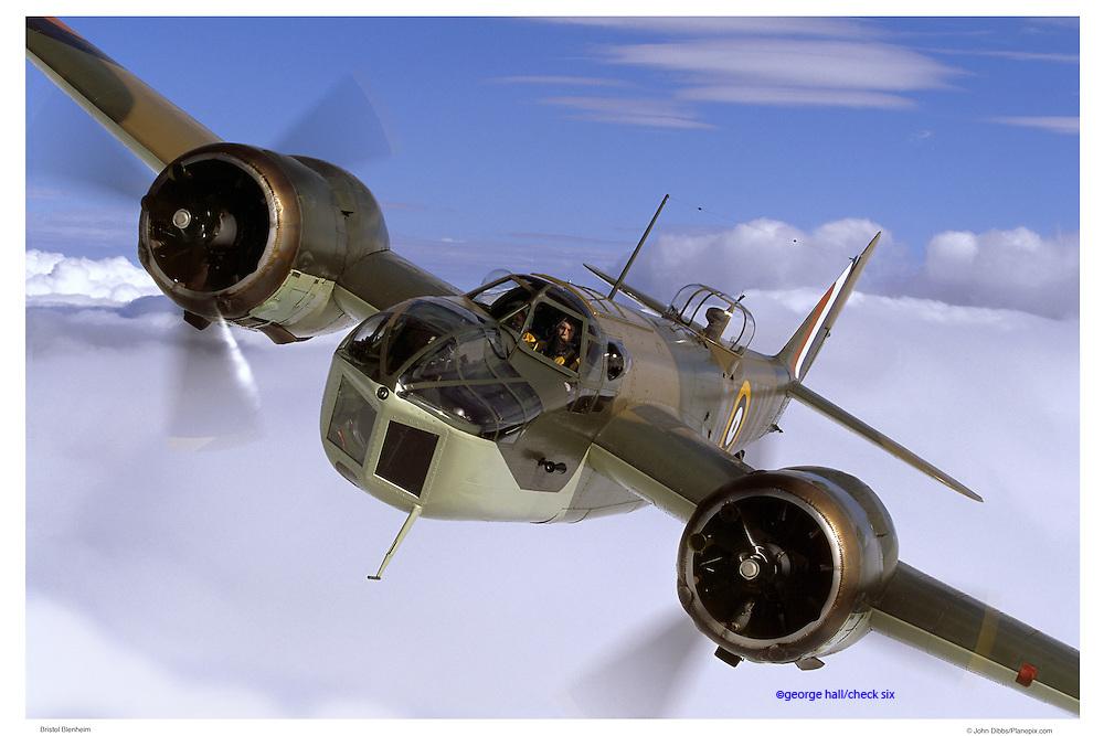 Blenheim, aerial close up