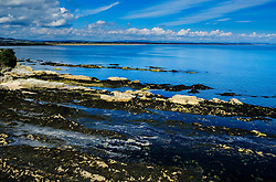 The seafront at St Andrews, Fife Scotland near the castle at low tide<br /> <br /> (c) Andrew Wilson | Edinburgh Elite media