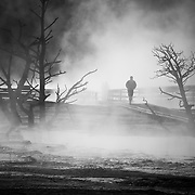 Brendan Quigley walks through the early morning mist at Mammoth Hot Springs in Yellowstone National Park Wyoming.