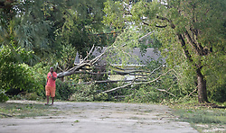 Trees brought down by the winds of Hurricane Irma in Fort Lauderdale, FL, USA are seen in the Tarpon Bend area on Monday, September 11, 2017. Photo by Joe Cavaretta/Sun Sentinel/TNS/ABACAPRESS.COM