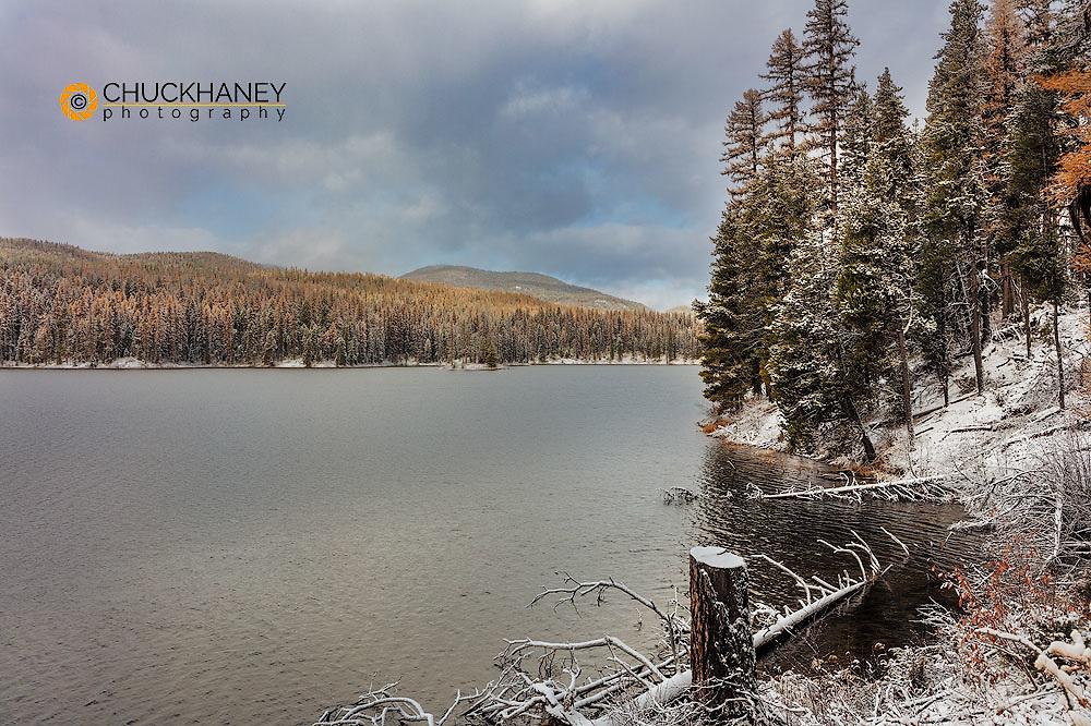 Fresh snowfall along Alva Lake in the Lolo National Forest, Montana, USA