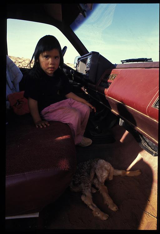 Engenia Chee (4) with a new-born sheep.   Oljeto, Utah.