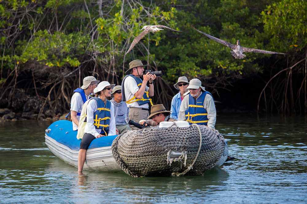 Visitors photographing wildlife, Galapagos