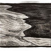 A nature abstract of the Palouse area of Eastern Washington that shows the natural contours of the hills as the fields are planted with winter wheat.