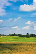 Green meadows and golden fields in hot summer day, near Nesaules kalns, Vidzeme, Latvia Ⓒ Davis Ulands   davisulands.com