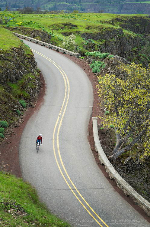 Bicyclist on Historic Columbia River Highway at Rowena Crest, Columbia River Gorge National Scenic Area, Oregon
