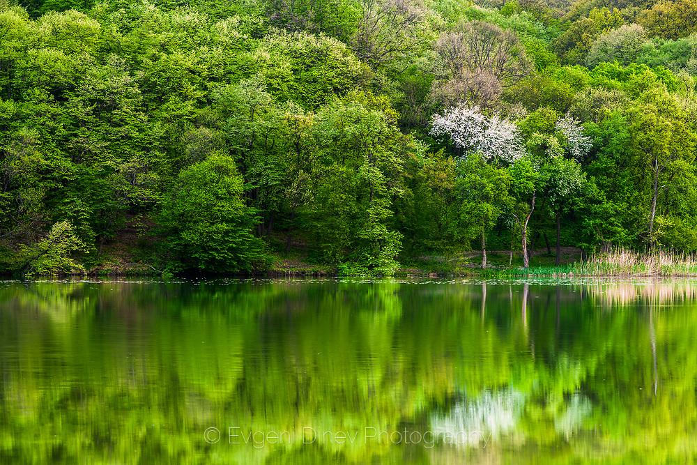 Malak Preslavets lake near to Danube river