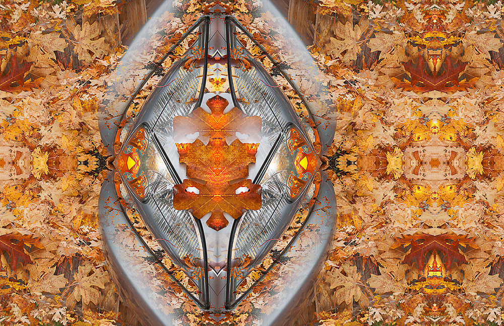 """""""Holloween Party"""", derivative image created from a photo of an automibile headlight and autumn maple leaves, overcast light, October, Olympic Peninsula, WA, USA"""