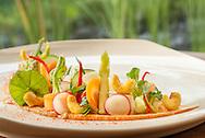 Keywords:Raw, Vegetable, GadoGado, Tofu, Curries Cashew, Appetizer, Starter