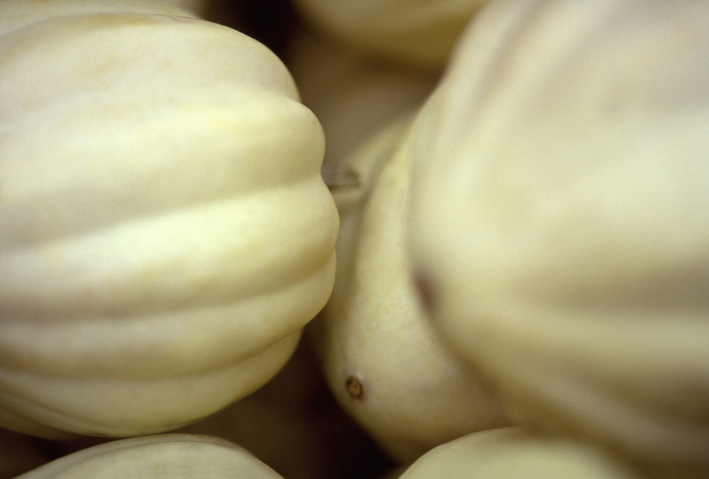 Extreme close up selective focus photograph of a few White Acorn Squash