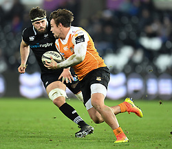 Cheetahs' Nico Lee<br /> <br /> Photographer Mike Jones/Replay Images<br /> <br /> Guinness PRO14 Round Round 16 - Ospreys v Cheetahs - Saturday 24th February 2018 - Liberty Stadium - Swansea<br /> <br /> World Copyright © Replay Images . All rights reserved. info@replayimages.co.uk - http://replayimages.co.uk