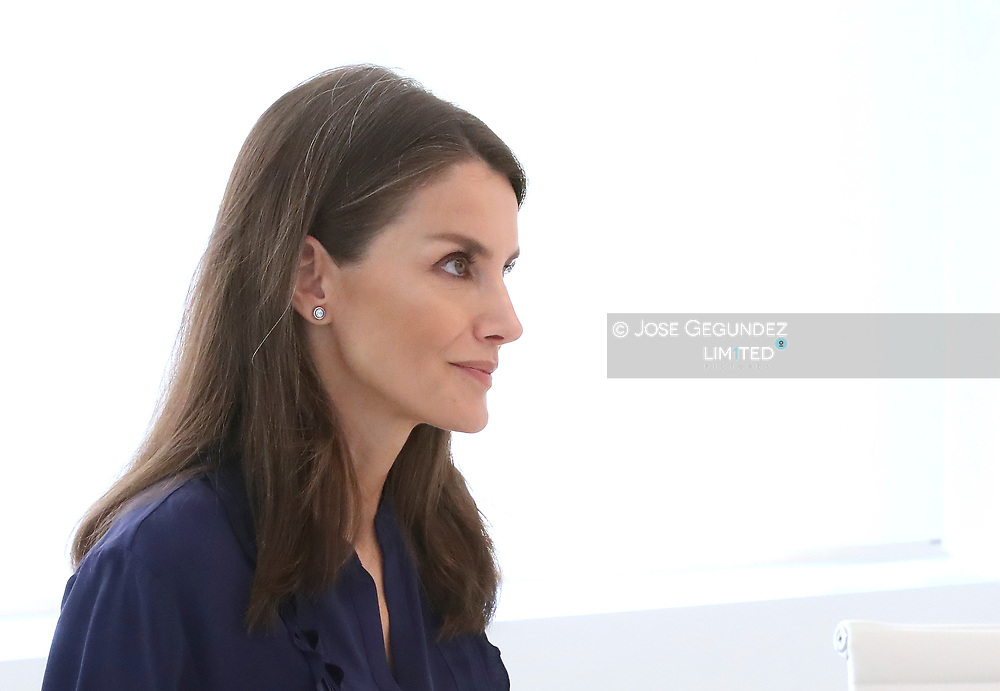 Queen Letizia of Spain attends a videoconference with associations of people with brain damage and their families at Zarzuela Palace on May 8, 2020 in Madrid, Spain