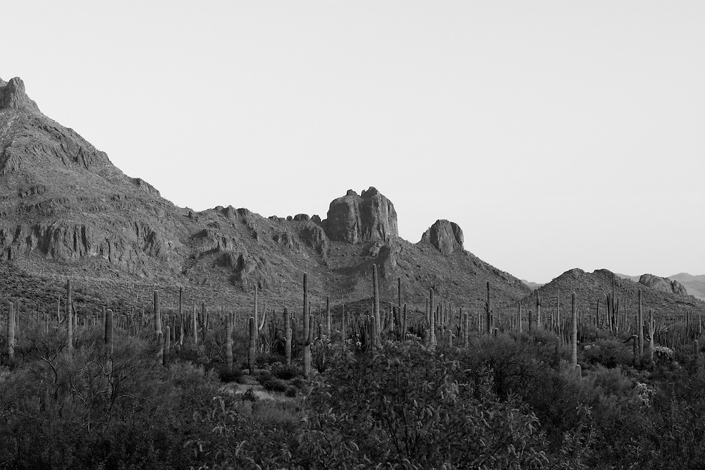 This incredible wild and harsh desert near the Mexican town of Sonoyta is deep in the Ajo Mountain range in Southern Pima County, Arizona. Saguaro cacti, gila monsters, rattlesnakes, scorpions, tarantulas, a searing sun are staples of this dangerous part of the Sonoran Desert, and there is a long, deep history among the remnants of the Tohono O'odham Nation who thrived here for centuries, and the ancestral Puebloans who created a vibrant culture here before them.