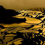 The rice terrace textures of the Yuang Yang region of China.