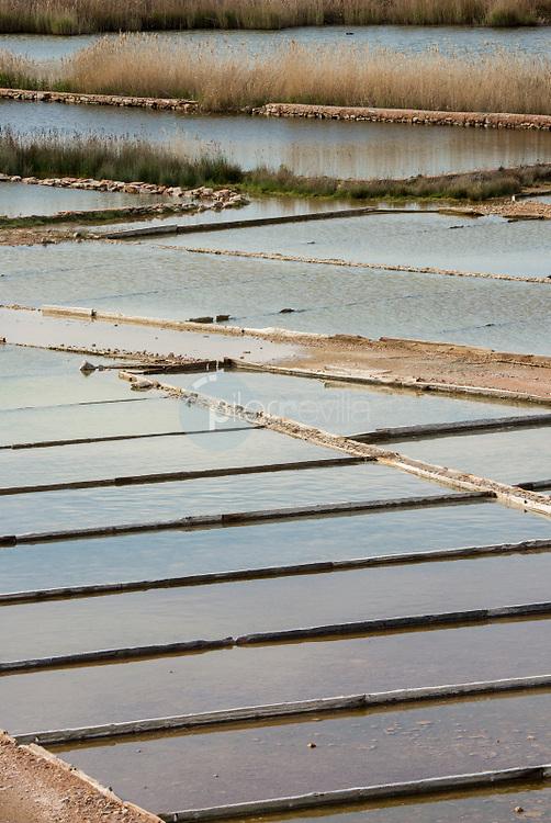 Microreserva Salinas de Pinilla. Alcaraz. Albacete ©ANTONIO REAL HURTADO / PILAR REVILLA