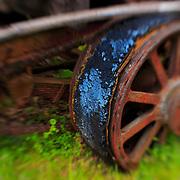 Decay Of The Machine - Pottsville - Merlin, Oregon - Lensbaby