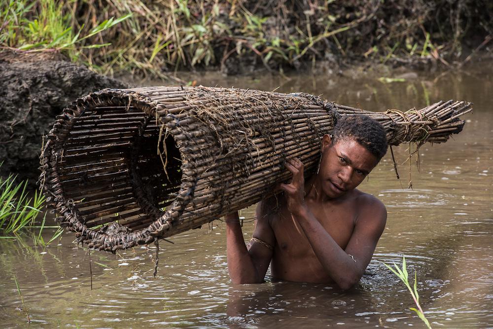 Dani tribe fisherman<br /> With fish trap<br /> Budaya village<br /> Suroba<br /> Trikora Mountains<br /> West Papua<br /> Indonesia