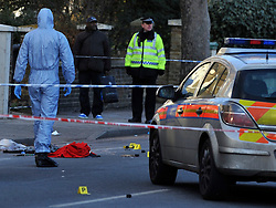 © Licensed to London News Pictures. 19/02/2012, London, UK. Police have shot a man in Forest Hill,London with firearms and a taser. A man is in a critical condition after being shot by police in south-east London. Police were called to reports of a man trying to break into a car in Elsinore Road, Forest Hill, in the early hours.. Photo credit : Stephen Simpson/LNP