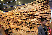"""CHINA - NOVEMBER 14:  china out - finland out<br /> <br /> People look at the world's longest wood carving work of """"Along the River During the Qingming Festival"""", 12.286m in length, 3.075, in height and 2.401m in width, at Tenghui Craft Factory on November 14, 2013 in Putian, <br /> ©Exclusivepix"""