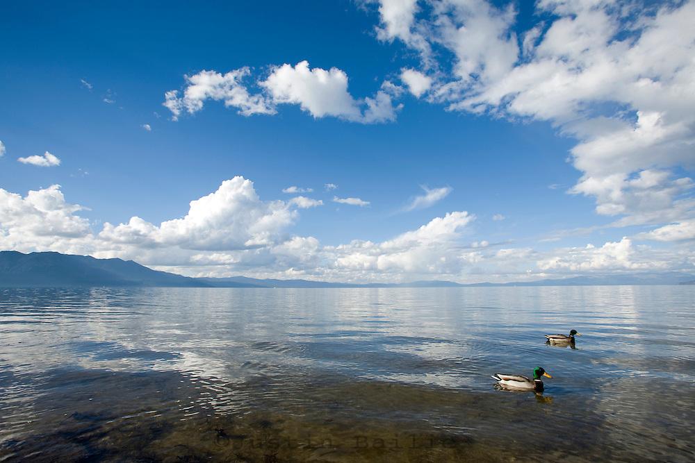 Scenic view of Lake Tahoe, CA