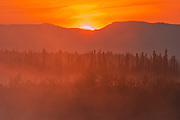 Fog at sunrise  and mountains. Haines Road. <br />