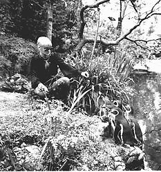 BARBARA HULANICKI at Biba's Roof Garden in May 1974.