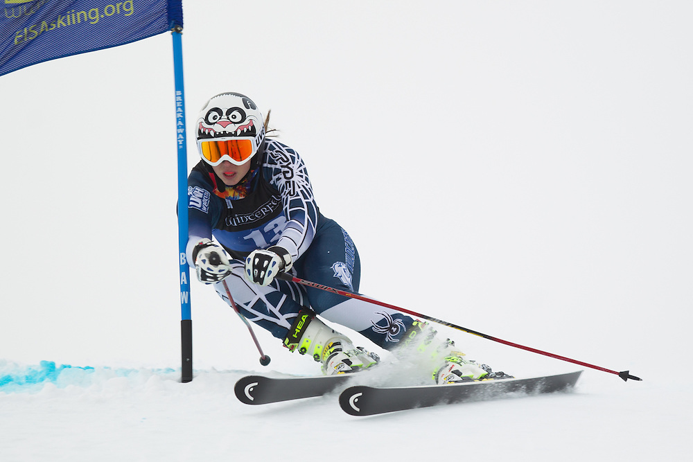Randa Teschner of the University of New Hampshire, skis during the first run of the women's giant slalom at the Colby College Carnival at Sugarloaf Mountain on January 17, 2014 in Carabassett Valley, ME. (Dustin Satloff/EISA)