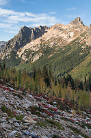 Cutthroat Pass trail North Cascades Washington