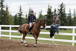 Brash Scott, (GBR), Hello Forever, Madden John<br /> Spruce Meadows Masters - Calgary 2015<br /> © Hippo Foto - Dirk Caremans<br /> 08/09/15