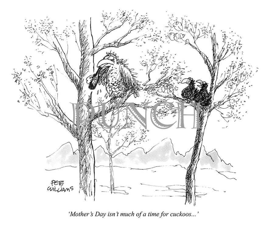 'Mother's Day isn't much of a time for cuckoos...'