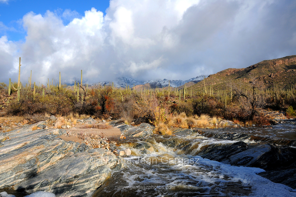 Snow covers the Santa Catalina Mountains in the Coronado National Forest in the Sonoran Desert,Tucson, Arizona, USA.  Bear Creek flows after a winter storm.