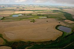Plantação de Trigo, em São Borja no Rio Grande do Sul. FOTO: Jefferson Bernardes / Preview.com