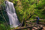 Hiker taking pictures of Berry Creek Falls, Big Basin State Park, Santa Cruz County, California
