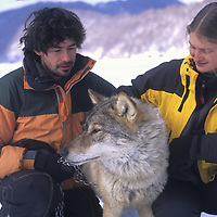 Christoph and Barbara Promberger with Crai, a captive wolf.
