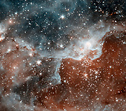 The image shows a cloud, known as DR22, bursting with new stars in the Cygnus region of the sky. Spitzer.