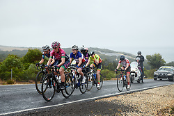 Silvia Valsecchi (ITA) leads the bunch at the 2020 Cadel Evans Great Ocean Road Race - Deakin University Women's Race, a 121 km road race in Geelong, Australia on February 1, 2020. Photo by Sean Robinson/velofocus.com