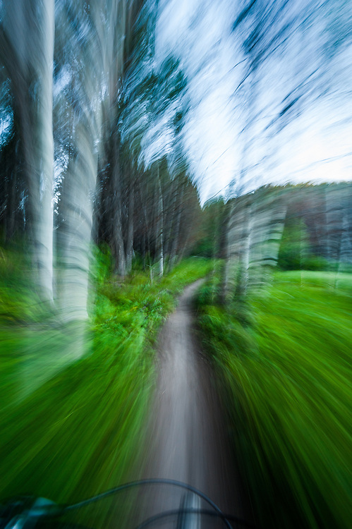 Mountain biking speed blur through spring foliage and aspen trees in Central Idaho.  Licensing and Open Edition Prints.