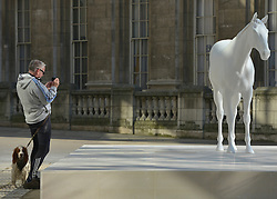 © Licensed to London News Pictures. 05/03/2013. Westminster, UK A man and his dog stop to photograph the sculpture. The British Council - the UK's international organisation for educational opportunities and cultural relations - unveils a new sculpture, The White Horse by Mark Wallinger, outside its headquarters on The Mall in London, as it announces £7 million of extra investment in its work to connect the best of the UK's creative talent with the world. The statue, made of marble and resin, is a life-size representation of a thoroughbred racehorse. It has been created using state-of the-art technology in which a live horse was scanned using a white light scanner, producing an accurate representation of the animal. It will be on display for two years, before touring overseas. Photo credit : Stephen Simpson/LNP
