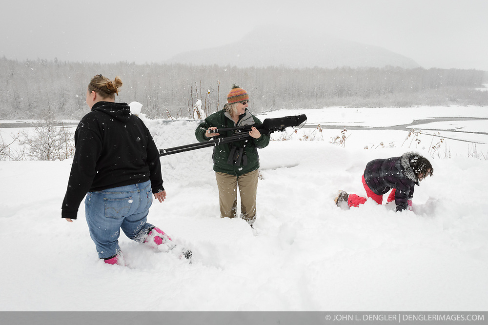 Pam Randles, Takshanuk Watershed Council Education Director, is about to find her self in the middle of snowball throwing between students Maggie Martin (left) and Allison Stuart (right) after counting bald eagles (Haliaeetus leucocephalus) from an overlook above the Klehini River. Since 2009, students have been conducting a weekly count of bald eagles during the fall semester for the citizen science class at the Haines School. The project is part of a field-based for-credit class, sponsored by the Takshanuk Watershed Council, in which students participate in research studies and learn about field data collection. Under the guidance of Pam Randles, Takshanuk Watershed Council Education Director, students count bald eagles in the Chilkat River Valley using spotting scopes at 10 locations and present their data at the Bald Eagle Festival held in November in Haines. During late fall, bald eagles congregate along the Chilkat River to feed on salmon. This gathering of bald eagles in the Alaska Chilkat Bald Eagle Preserve is believed to be one of the largest gatherings of bald eagles in the world.