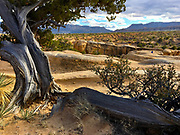 Southwestern Utah, Escalante National Monument, American national parks