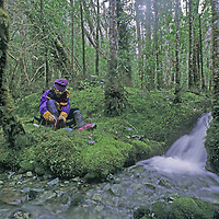 CORDILLERA SARMIENTO EXPEDITION, CHILE. Mountaineer Jack Miller (MR) rests in mossy rain forest in this previously unexplored mountain range above the southern fjords of Patagonia.