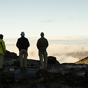 A group of four hikers look out over the clouds below from Moir Hut Camp (13,660 feet) before that day's climb on Mt Kilimanjaro's Lemosho Route.