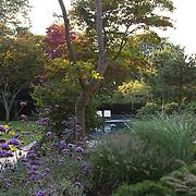 Modern Garden 1010