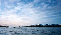 Padlere i havkajakk på nordligste spissen av Spitsbergen, Sea kayaks at the northernmost tip of Spitsbergen