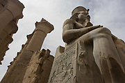Massive stitting colossus in the Court of Ramesses II at the ancient Egyptian Luxor Temple, Nile Valley, Egypt. The temple was built by Amenhotep III, completed by Tutankhamun then added to by Rameses II. Towards the rear is a granite shrine dedicated to Alexander the Great  and in another part, was a Roman encampment. The temple has been in almost continuous use as a place of worship right up to the present day.