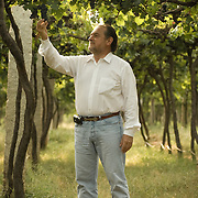 Michel Rolland at Grover Vineyards near Bangalore, India. Michel Rolland is the foremost wine consultant in the world. He has a Bordeaux-based consulting practice which takes care of the most prestigious estates across 12 countries around the globe. He consults some of the greatest Bordeaux Great Growth such as Château Angelus, Château Lascombes, Château Léoville Poyferré, Château Belgrave. Among others, he also consults Casa Lapostolle in Chile, Robert Mondavi, Harlan Estate in California and Château Saint Michelle.