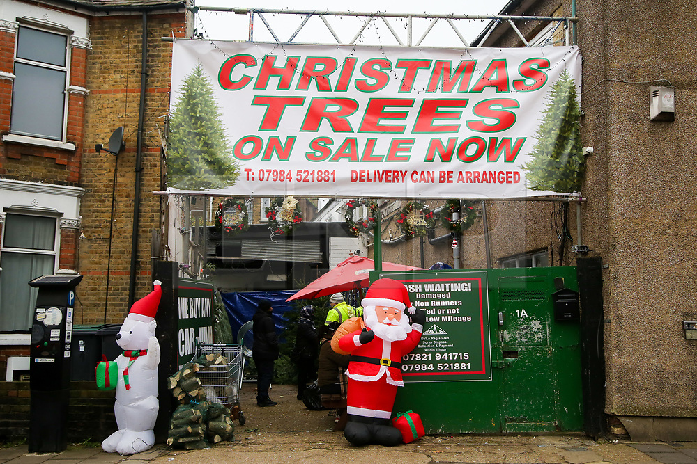 © Licensed to London News Pictures. 28/11/2020. London, UK. Real Christmas trees for sale in a north London garden centre selling real Christmas trees. During the second lockdown in England, garden centres and retailers selling Christmas trees have been allowed to open. Photo credit: Dinendra Haria/LNP