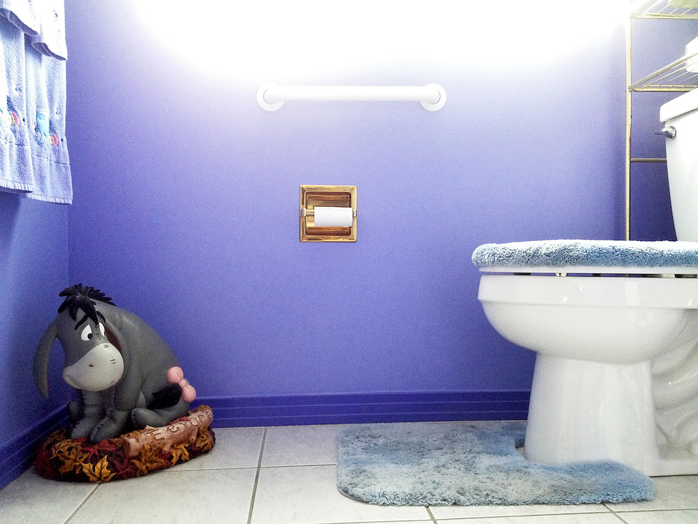 """An Eeyore statue eyes the toilet in what I lovingly and ironically call """"The Happiest Place on Earth,"""" Grandpa Roth and Wendi's home in Centennial, Colorado on Thursday, August 08, 2013."""
