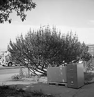 Gatearkivet.<br /> Foto: Svein Ove Ekornesvåg