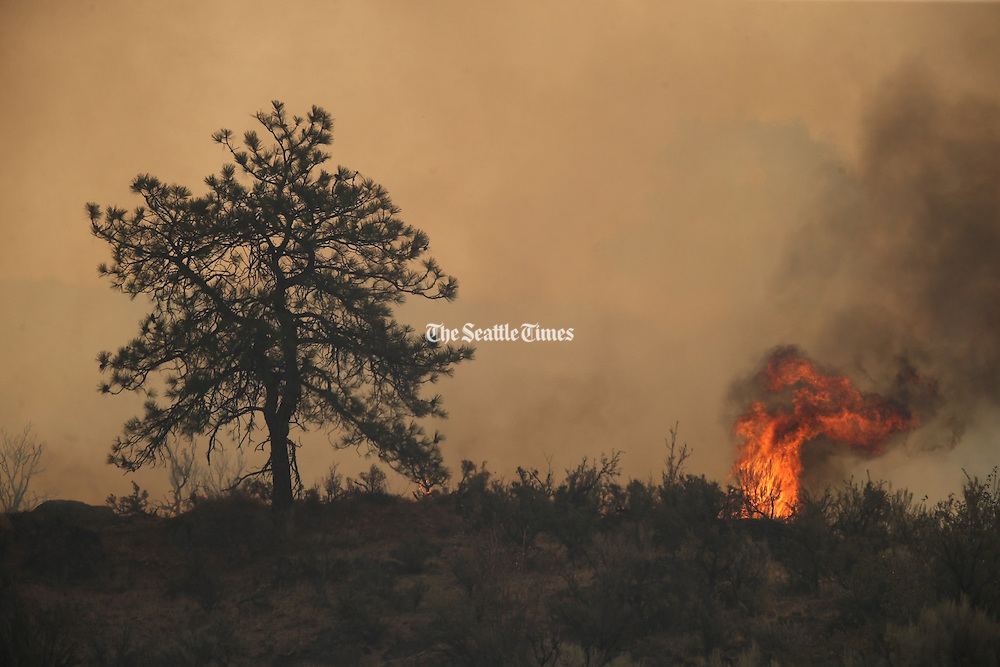 Wind whips up fire near Salmon Creek Road southwest of Omak Friday August 21, 2015.<br /> <br /> Bettina Hansen / The Seattle Times